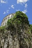 Old silo is vine covered Stock Photography