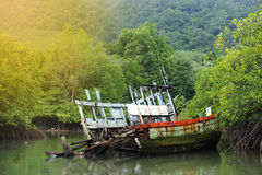 Old Sink fishing boat dock dead along mangrove canal river fores. Vintage Sink Boat and broken in Mangrove forest, rainy day royalty free stock photography
