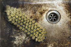 Old sink with scrupper Stock Photos