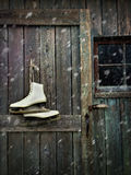 Old skates hanging on barn door Stock Photos
