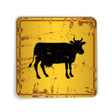 Old skratched yellow road sign with cow silhouette Royalty Free Stock Image
