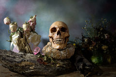 Old Skull on Decayed wood and Wither pumpkin, Still Life Royalty Free Stock Image
