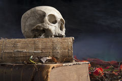 Old skull on old book Stock Image