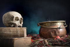 Old skull on old book Stock Photography