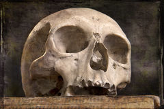 Old skull on old book Royalty Free Stock Photos
