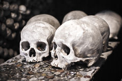 Old skulls with coins Stock Photo