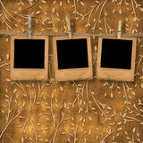 Old slides are hanging in the row. On the leafage ornamental background Royalty Free Stock Photography