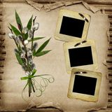 Old slides for photo with willow bouquet Royalty Free Stock Photos