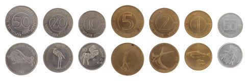 Old Slovenian Coins Isolated on White Royalty Free Stock Images