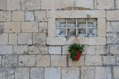 Old small window with bars and potted plant Royalty Free Stock Photo