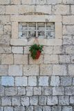 Old small window with bars on the wall and potted plant Royalty Free Stock Photos