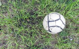 Old soccer ball on the grass of football field. Football on grasses with copy space Royalty Free Stock Photo
