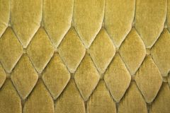 Old sofa texture Royalty Free Stock Images
