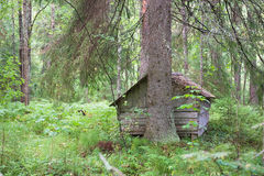 Old solid log cabin shelter hidden Stock Photos