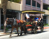 Old South Carriage tours, Charleston, SC. Royalty Free Stock Image