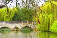 Old South USA. Weeping willows old bridge still water Royalty Free Stock Photo