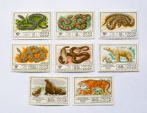 Old soviet postage stamps, snakes & animal Royalty Free Stock Photography