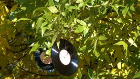 Old Soviet vinyl records are hung on tree