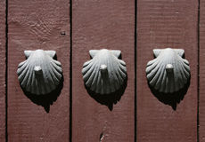 Free Old Spanish Door From Barcelona(Spain) Royalty Free Stock Image - 15196106