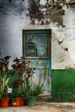 Old Spanish weathered front door and garden royalty free stock image