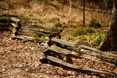 Old Split Rail Fence Running Through Forest Royalty Free Stock Image