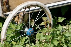 Old Spoked wheel. Rusty Old spoked wheel, looks like an old pram wheel, surrounded by over grown stinging nettles. Rusty and worn stock images