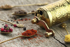 Old spoons with spices and pepper grinder Royalty Free Stock Image