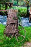 Old sprocket. With tree, Slunj, waterfall park Royalty Free Stock Photos
