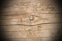 Old spruce plank exposed to the elements Royalty Free Stock Images