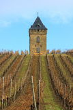 Old, square, tower. An old, square, tower with pointed roof in the Vineyard Royalty Free Stock Photo