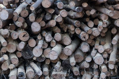 Old stack of firewood,Natural wooden background Royalty Free Stock Photography