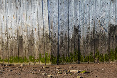Old Stained Plank of Woods Wall Royalty Free Stock Image