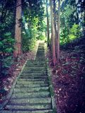 Old stair to shinto shrine stock image