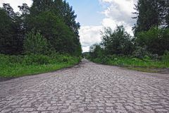 stone pavement through the forest royalty free stock image