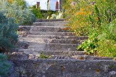 Old staircases in sicily. Old staircases in a small village of sicily with a lot of flowers around Royalty Free Stock Photos
