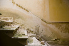 Old Stairs. Stairs in ruins of a building affected by the earthquake of 1968 in Poggioreale, Sicily Stock Images