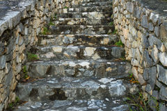 Old Stairs. Close-up of old stone stairs covered with some herbs stock image
