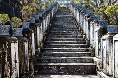 Old stairs. Up on the hill with tree pot Royalty Free Stock Photos