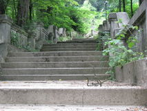 Old stairs. Around Govora, Romania. Picture taken ca. July 2012 Royalty Free Stock Images