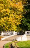 Old stairs and autumn trees. Old staircase to the manor and autumn trees royalty free stock image