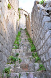 Old stairs on the City Wall in Kotor Stock Photography