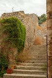 Old Stairs in a fortress. With some plants growing on it stock images