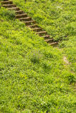 Old stairs in the green Royalty Free Stock Photography