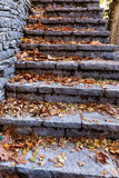 Old stairs in park covered with yellow maple leaves. Autumn conc Royalty Free Stock Photo