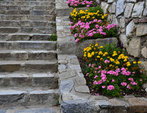 Old stairs in the park Royalty Free Stock Photography