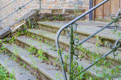 Old stairs, weeds, grass Royalty Free Stock Photography
