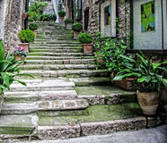 Old Stairway Italy Royalty Free Stock Photography