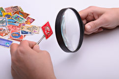 Old stamp in hands of the philatelist. With a magnifier on a light background Stock Photo