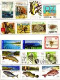 Old stamps from oceania Stock Photography