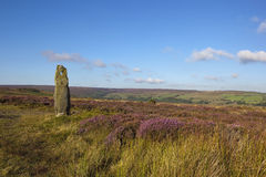 Old standing stone Stock Photo